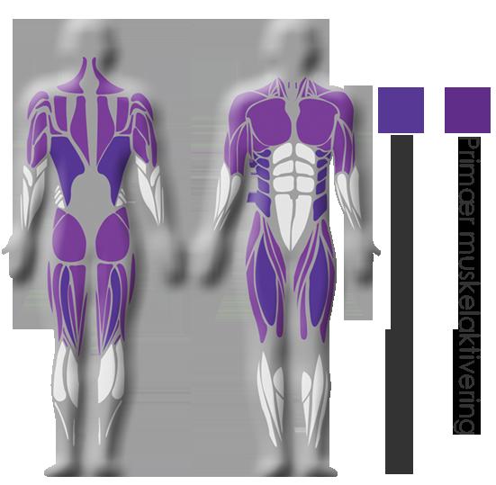 figur hofte og brystrotasjon shapemaster easytone nor